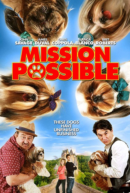 Mission Possible (2018) HDRip 720p x264 - SHADOW