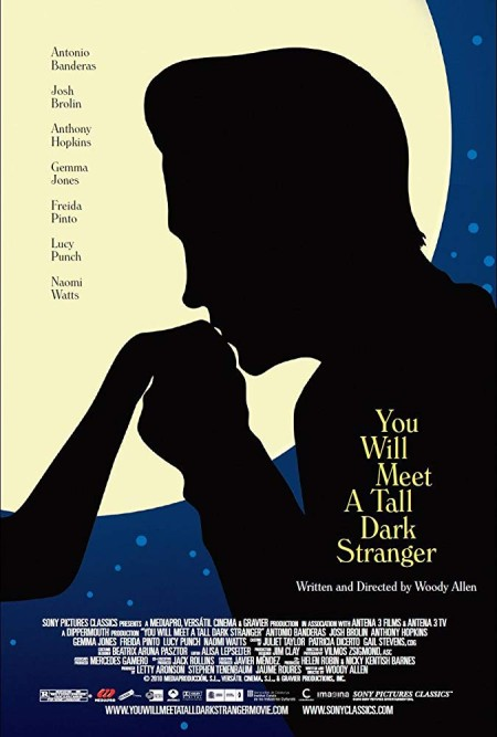 You Will Meet A Tall Dark Stranger (2010) BRRip XviD MP3-XVID