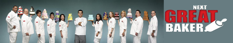 Cake Boss S01E08 Museum Mistakes and Mother Mary INTERNAL WEB x264 GIMINI