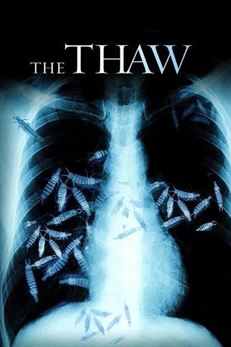 The Thaw 2009 720p BluRay Dual Audio Hindi English x264