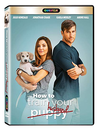 How to Train Your Husband (2017) 720p WEB-DL x264 Dual Audio Hindi English-MA