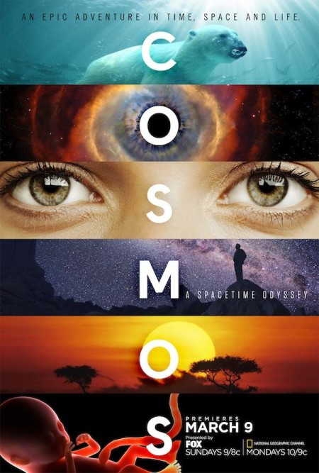 Cosmos Possible Worlds S01E06 HDTV x264-aAF
