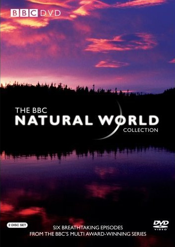 Natural World 2020 S35E05 HDTV x264-dotTV