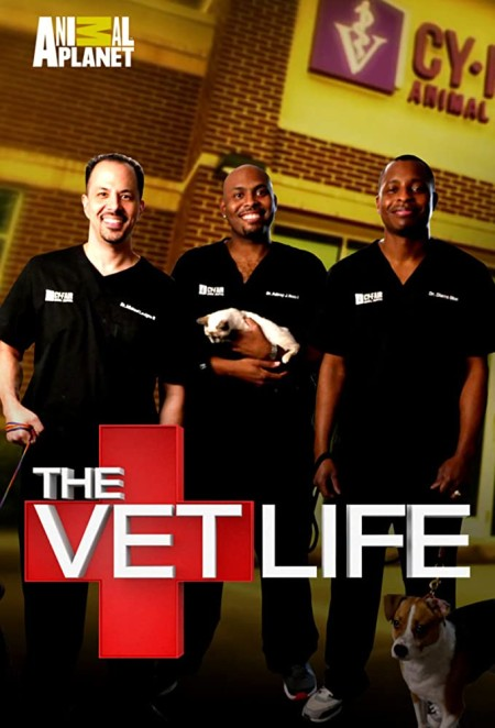 The Vet Life S06E00 Most Memorable Cases 720p WEB x264-57CHAN