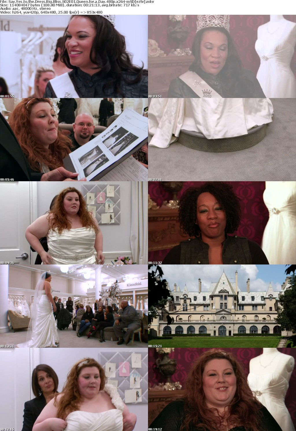 Say Yes to the Dress Big Bliss S02E01 Queen for a Day 480p x264-mSD