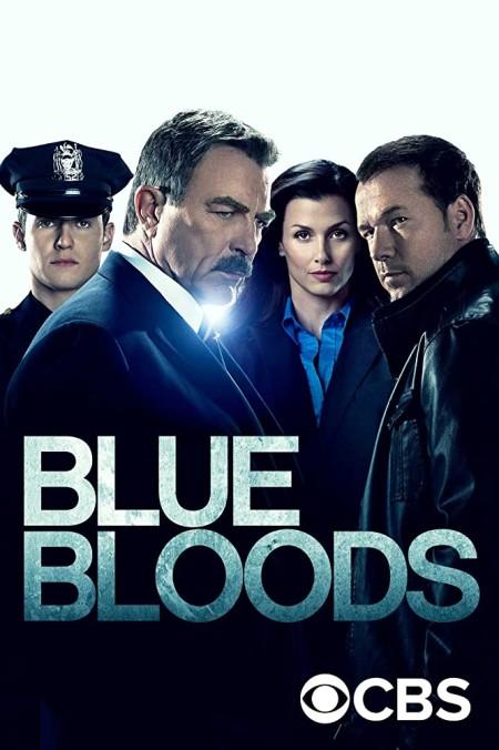 Blue Bloods S10E18 iNTERNAL 480p x264-mSD