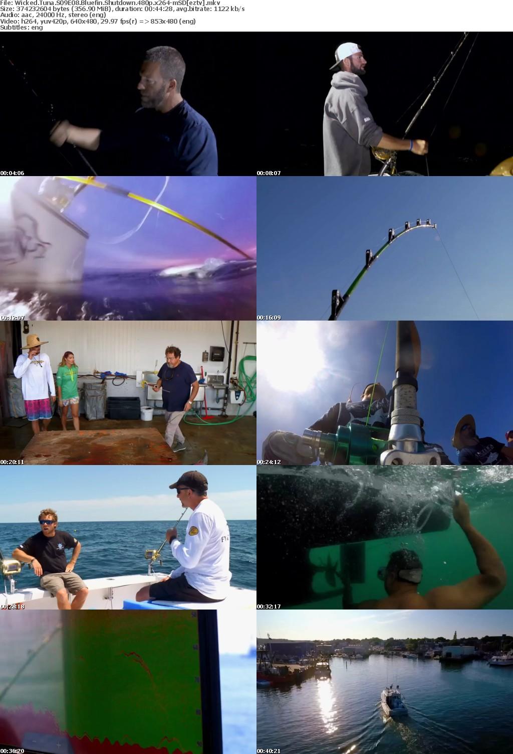Wicked Tuna S09E08 Bluefin Shutdown 480p x264-mSD