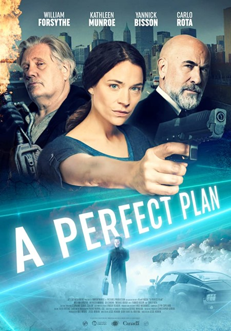 A Perfect Plan 2020 HDRip XviD AC3-EVO