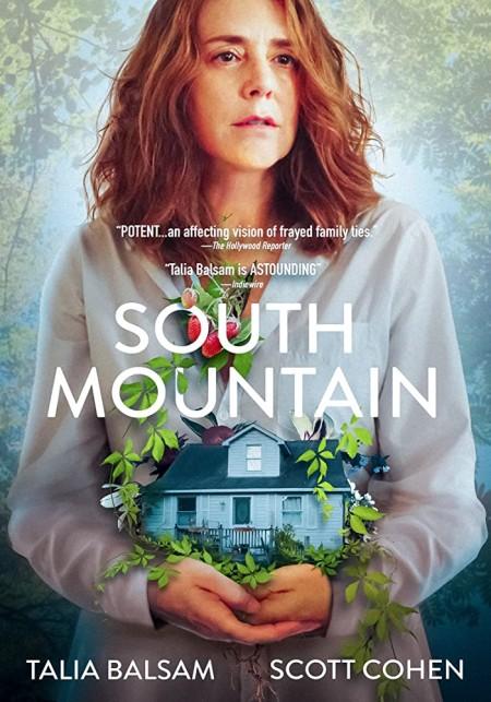 South Mountain 2020 1080p WEB-DL H264 AC3-EVO
