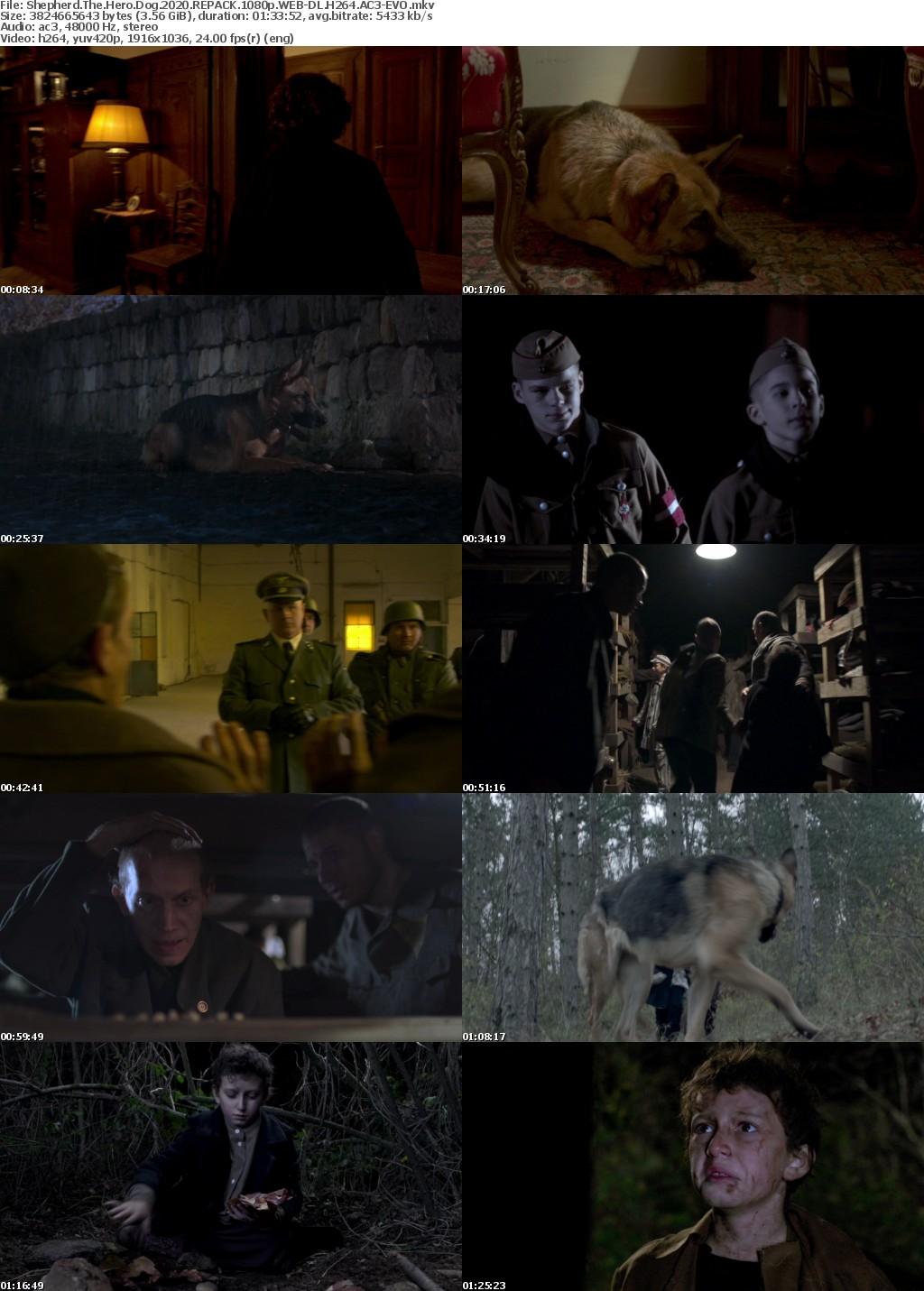 Shepherd The Hero Dog (2020) REPACK 1080p WEB-DL H264 AC3-EVO