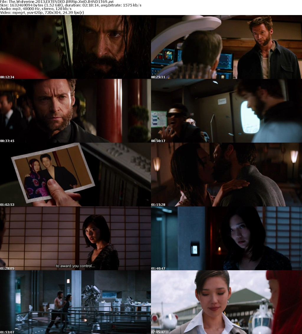 The Wolverine 2013 EXTENDED BRRip XviD B4ND1T69