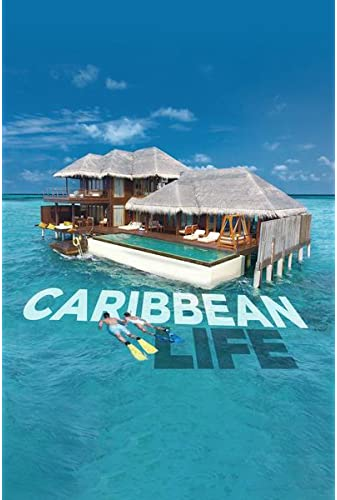 Caribbean Life S20E02 Searching for the Perfect Bachelor Pad on St Maarten iNTERNAL 720p WEB h264-ROBOTS