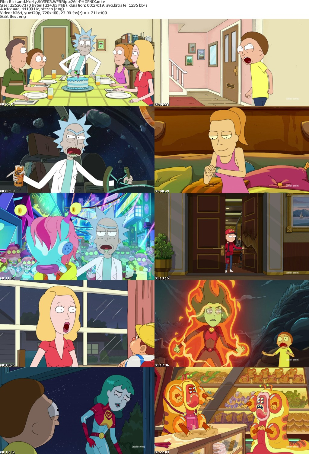 Rick and Morty S05E03 WEBRip x264-PHOENiX