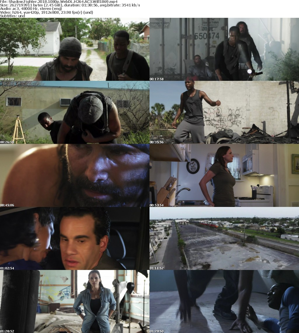 Shadow Fighter 2017 1080p WebDL H264 AC3 Will1869